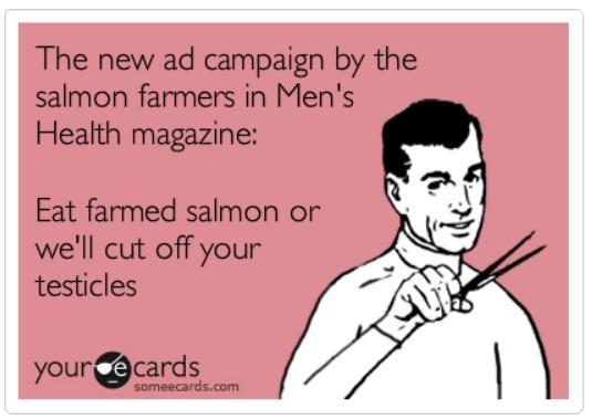 Ecard #38 ad campaign testicles