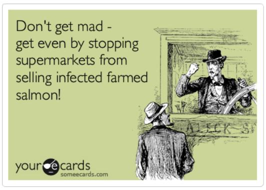 Ecard #50 don't get mad