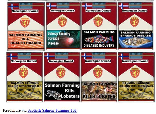 PR Scottish Salmon Farming 101 #8