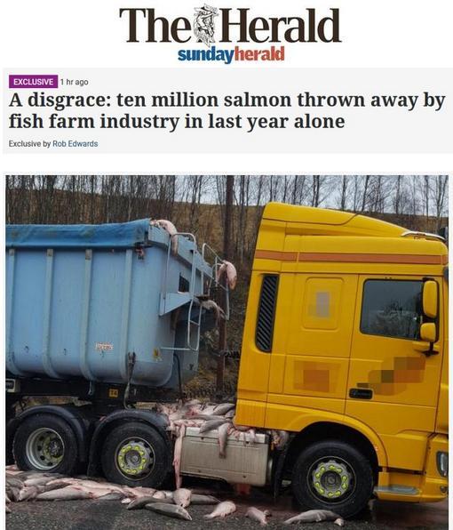 Sunday Herald 8 Oct 2017 headline with photo