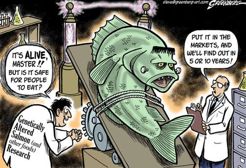 Frankensalmon cartoon