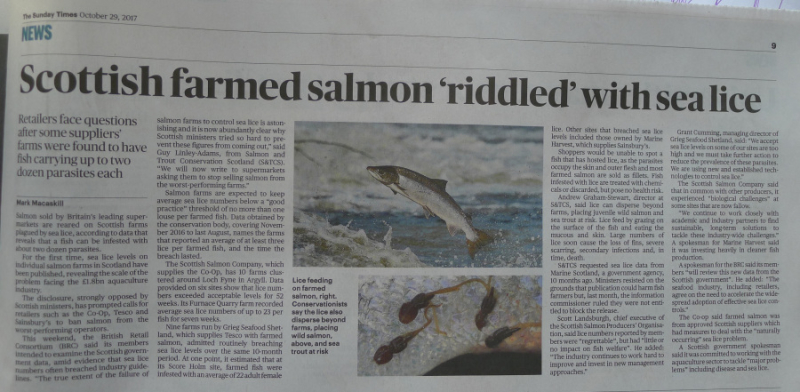 Sunday Times Oct 2007 sea lice