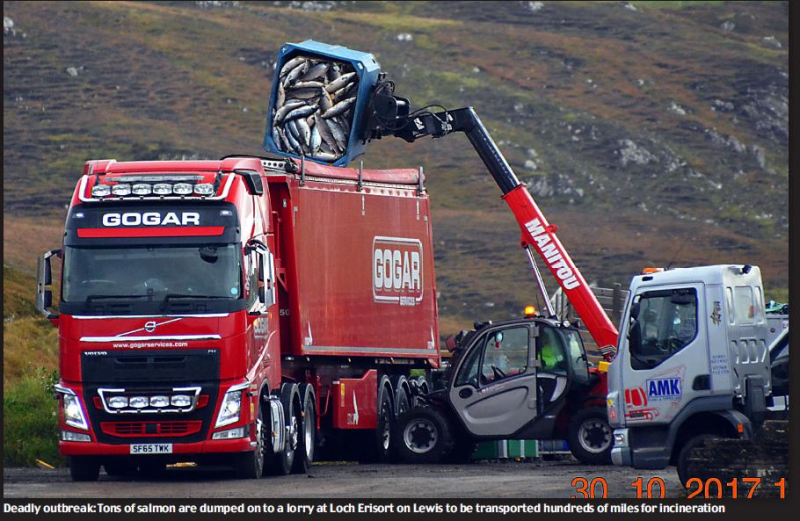 Daily Mail 27 Jan 2018 #1 PDF photo of truck
