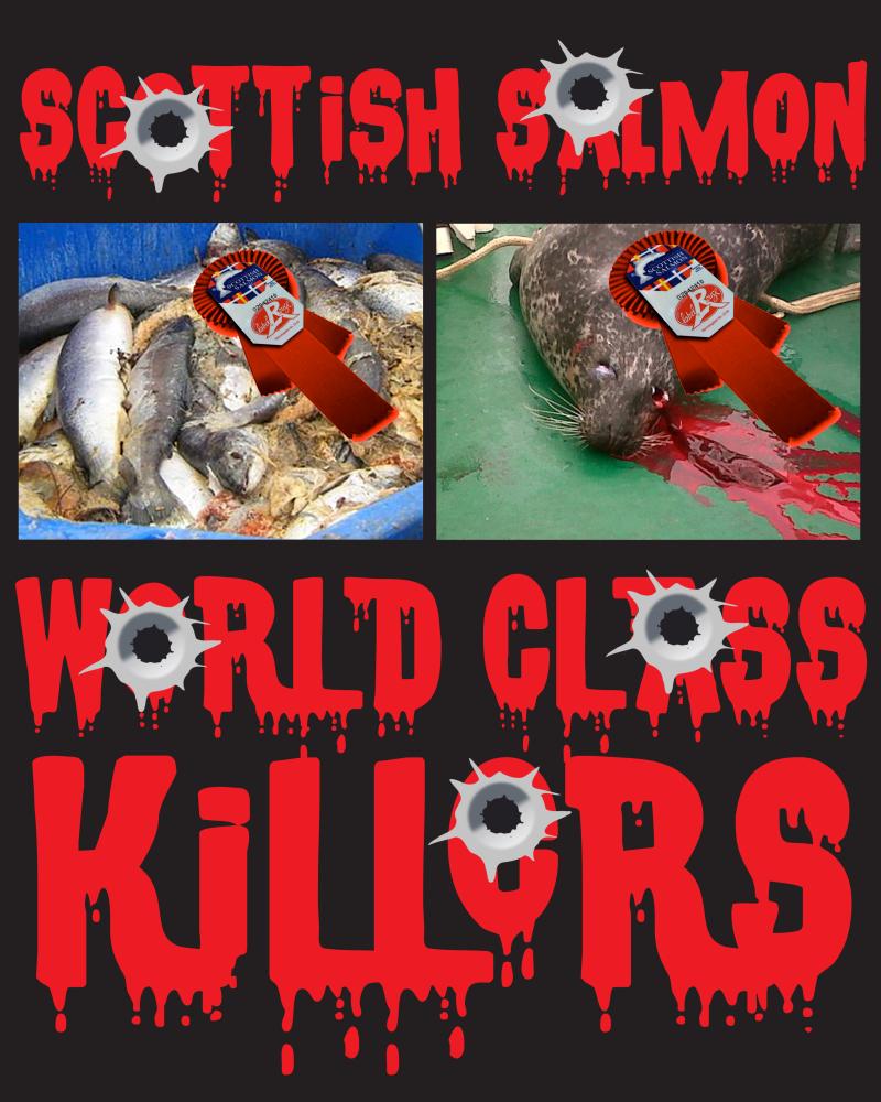 #7 World Class Killers