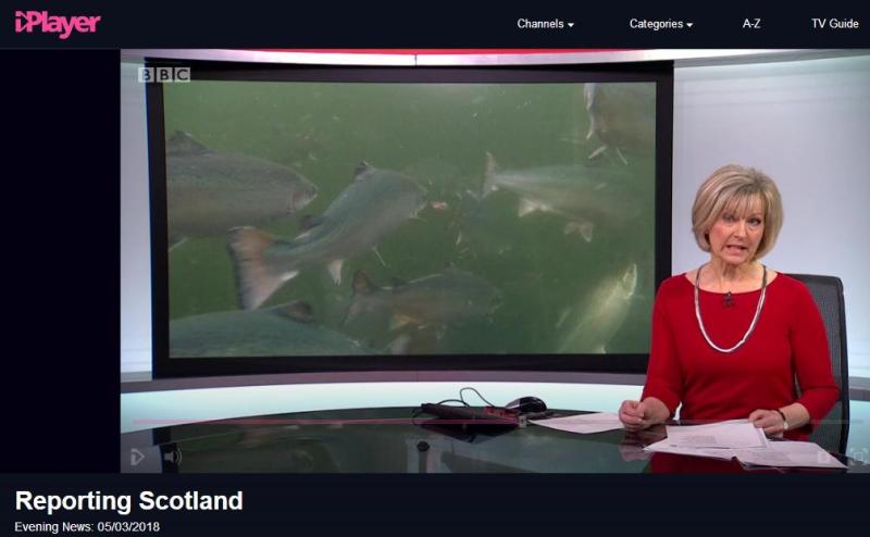 BBC News 5 March 2018 Reporting Scotland Presenter