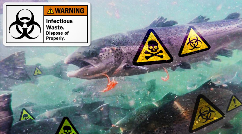 Poster #3 Warning Infectious low res