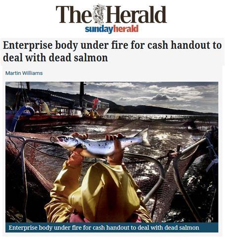 Herald 3 April 2018 #1