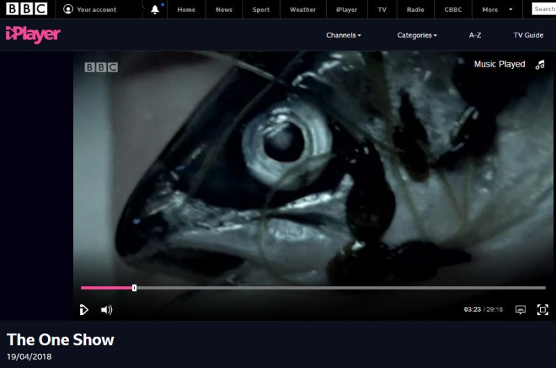 BBC One Show 19 April 2018 #1 sea lice salmon