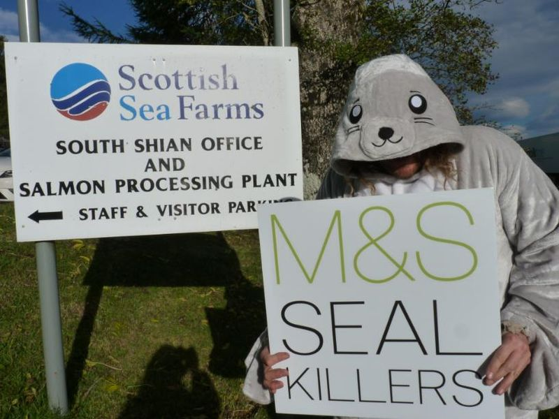 Photo #6 M&S Seal Killers outside SSF head office
