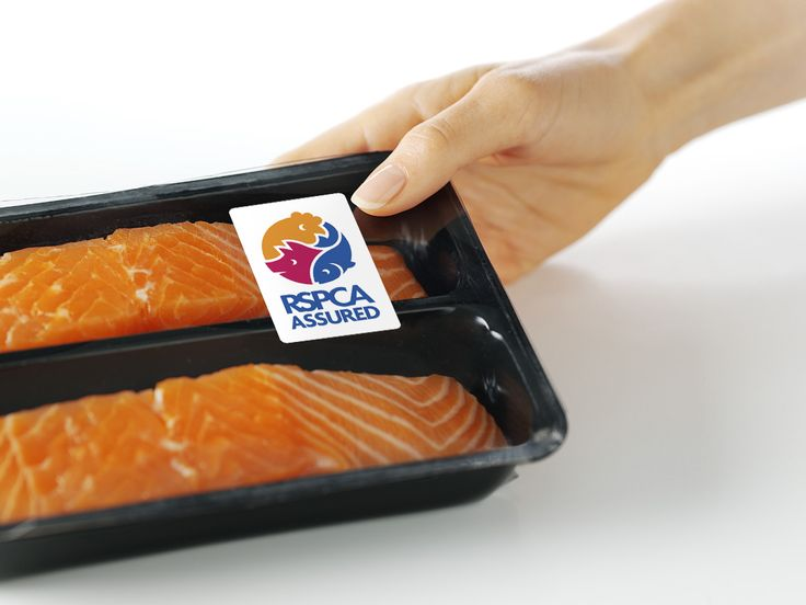 RSPCA Assured salmon pack