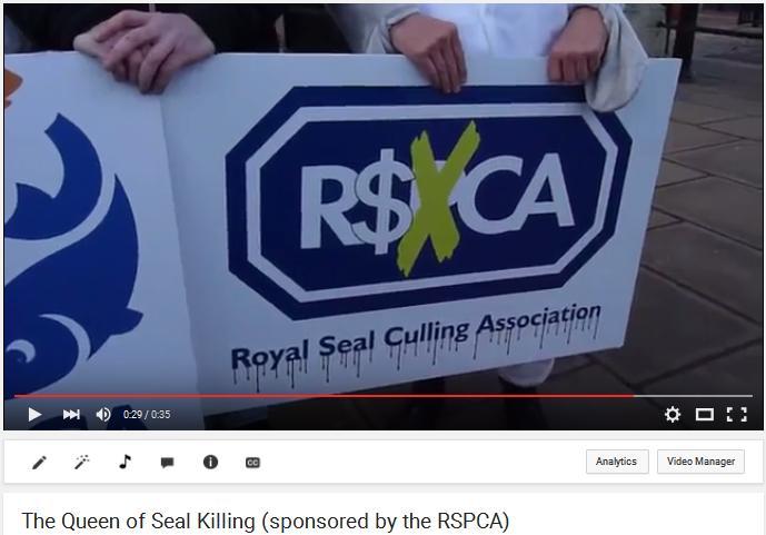 Video photo Queen RSPCA