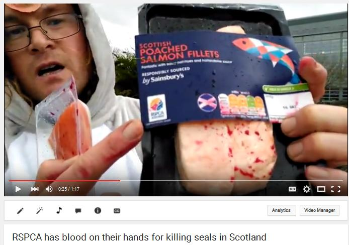 RSPCA Don video Loch Sunart