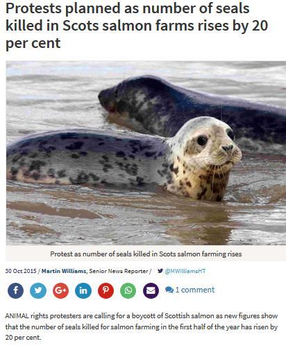 Sunday Herald Oct 2015