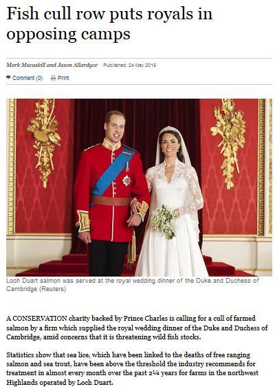 Royal blog #2 ST