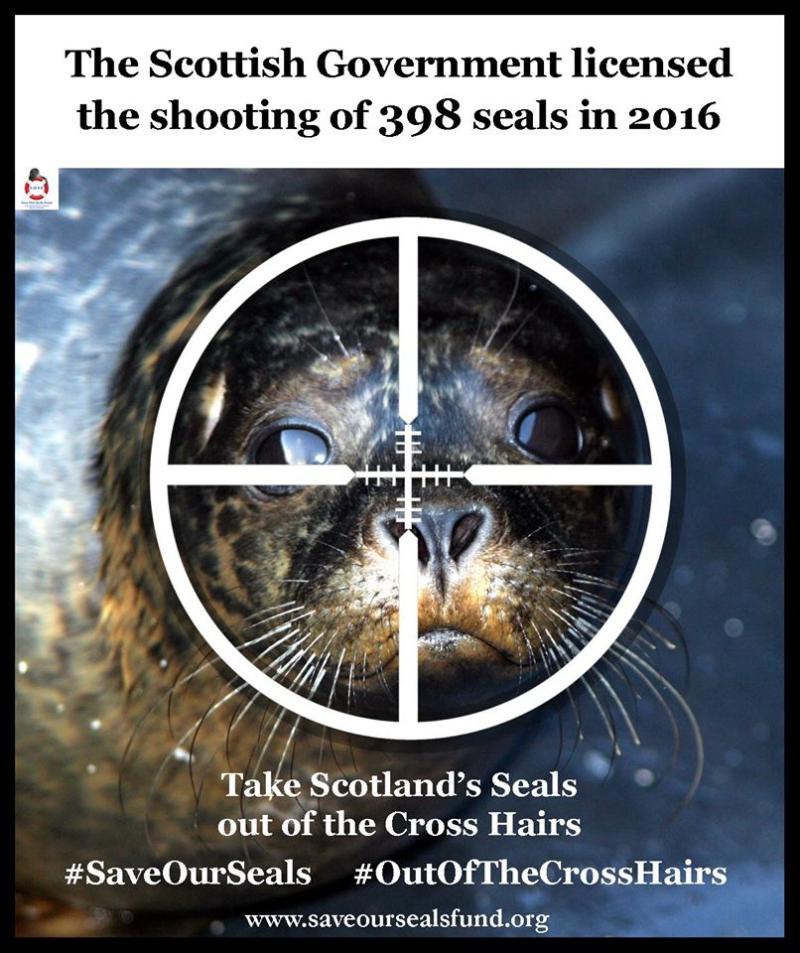 SOSF cross hairs Sept 2016