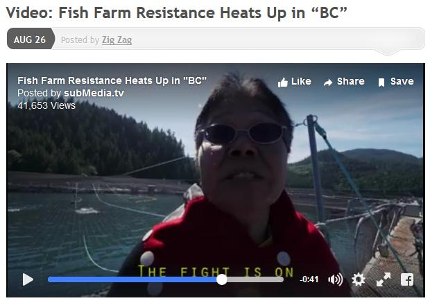 Resistance video fight