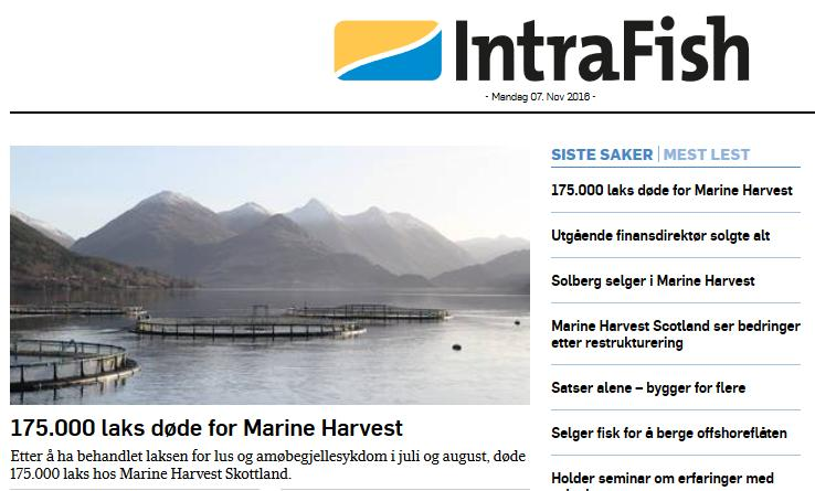 Intrafish top story 7 Nov 2016