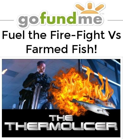 Go Fund Me Fuel the Fire-Fight Nov 2016