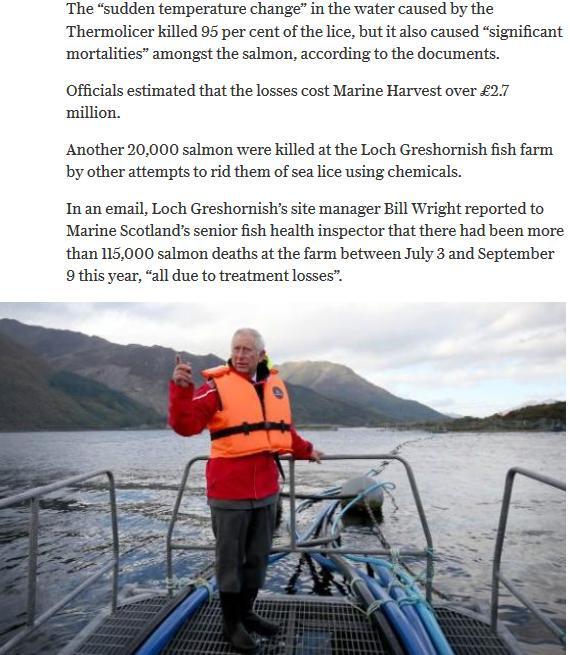 Daily Telegraph 18 Nov 2016 #3