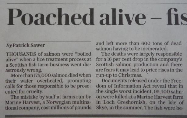 Daily Telegraph 19 Nov 2016 #2 Newspaper version
