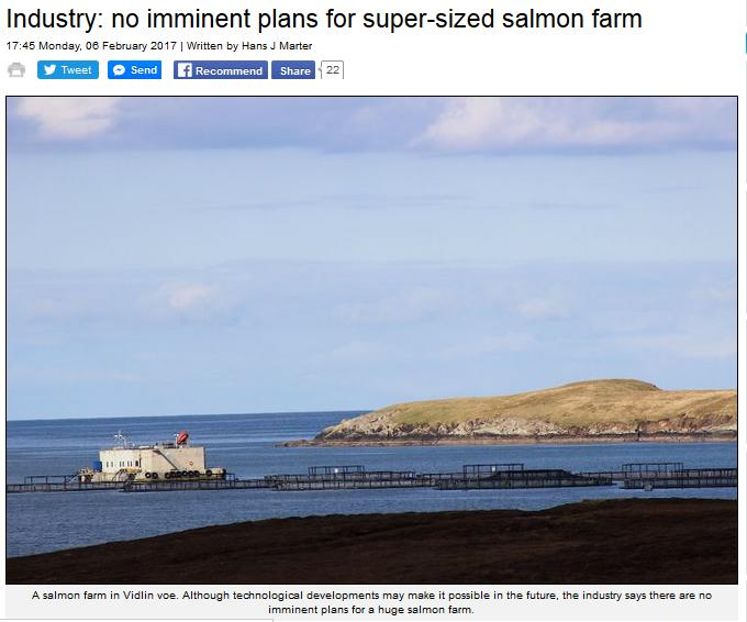 Shetland News 6 Feb 2017 #1