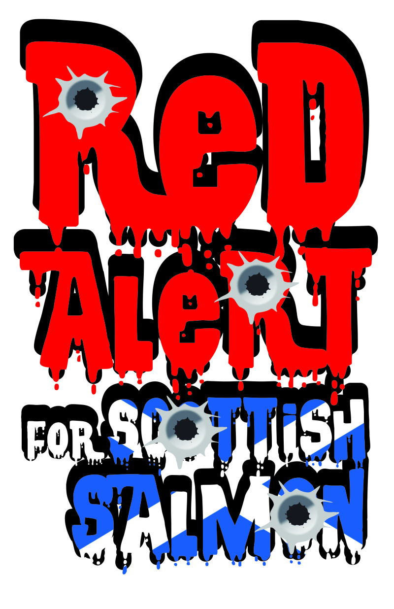#6 Red Alert for Scottish salmon