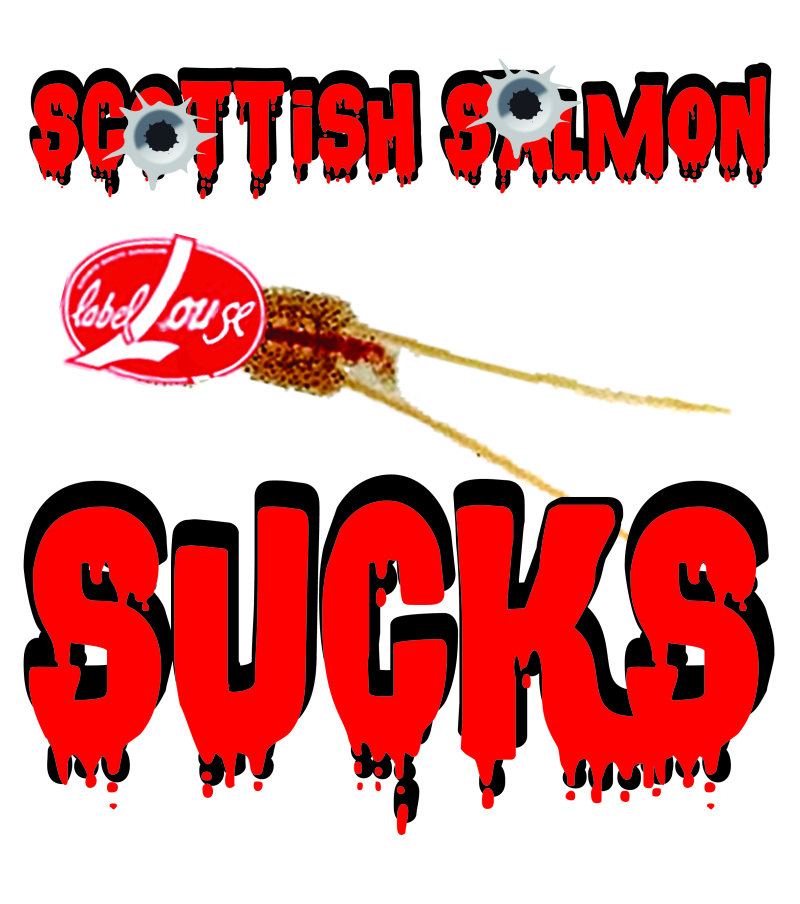 #8 Scottish salmon sucks