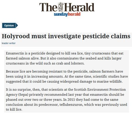 Sunday Herald 18 June 2017 Editorial #1