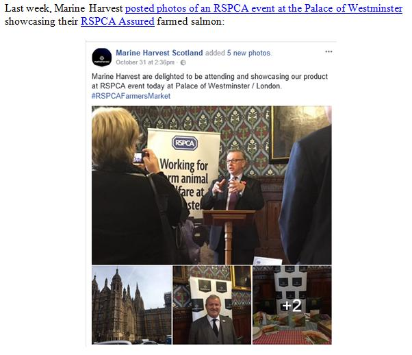 PR RSPCA in Firing Line over MH 8 Nov 2017 #3