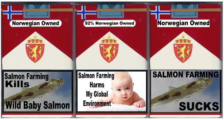 3 pack baby wild salmon