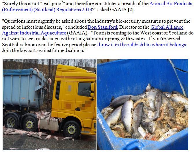 PR BBC Lifts Lid on Dead Salmon Run 13 Dec 2017 #7