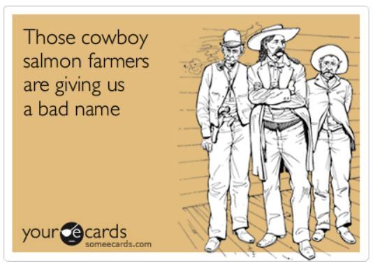 Ecard #39 cowboys
