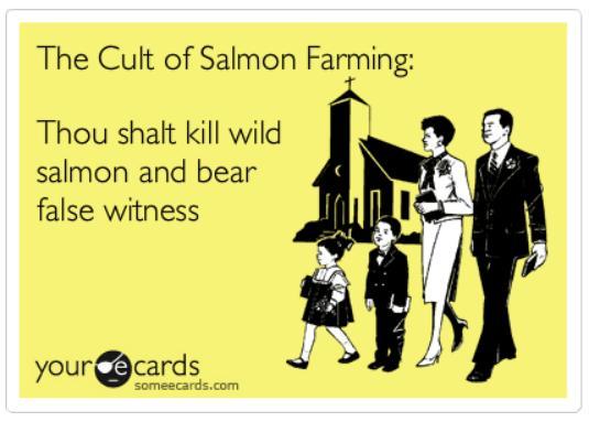 Ecard #65 cult of salmon farming