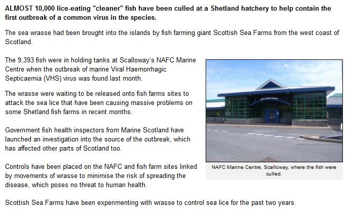 Shetland times 2013