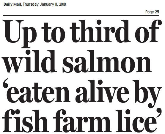 Daily Mail 11 Jan 2018 #1 headline