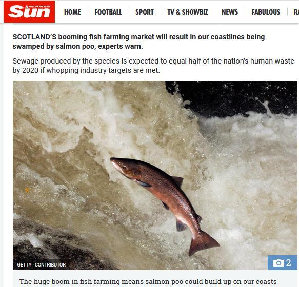 The Sun 4 Feb 2018 #2 Fish Faeces