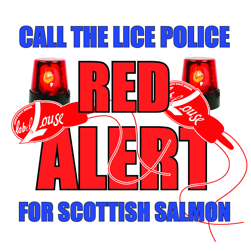 #16 Call the Lice Police Red Alert