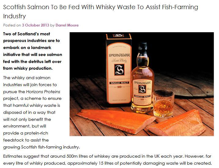 Whisky salmon