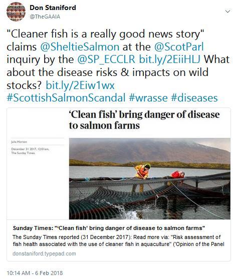 Tweet SP #12 cleaner fish