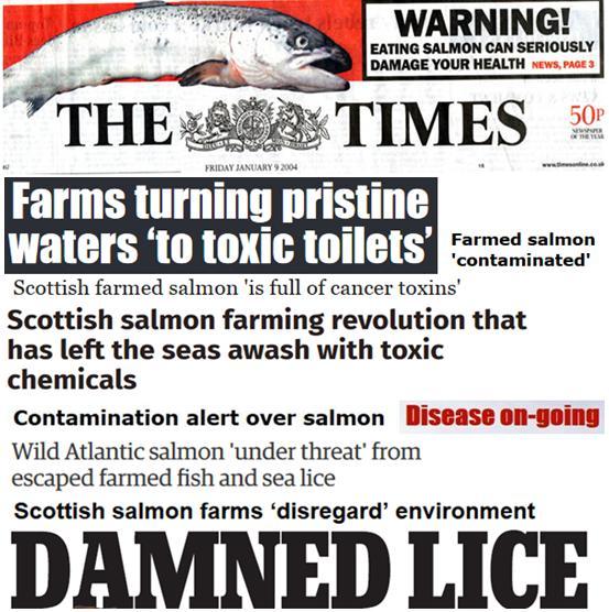 25 Years of Scottish Salmon Shame #1 collage