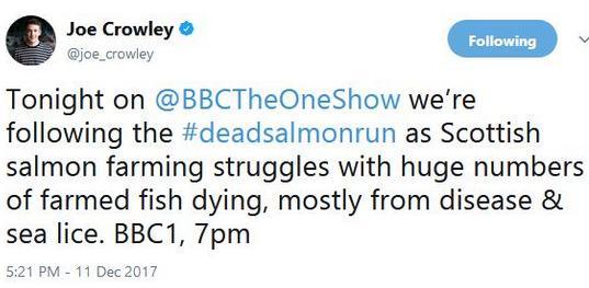 Tweet Joe Crowley