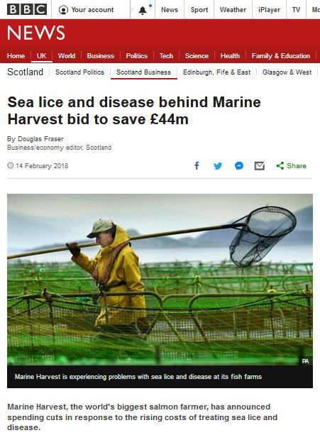 Marine Harvest job swap: