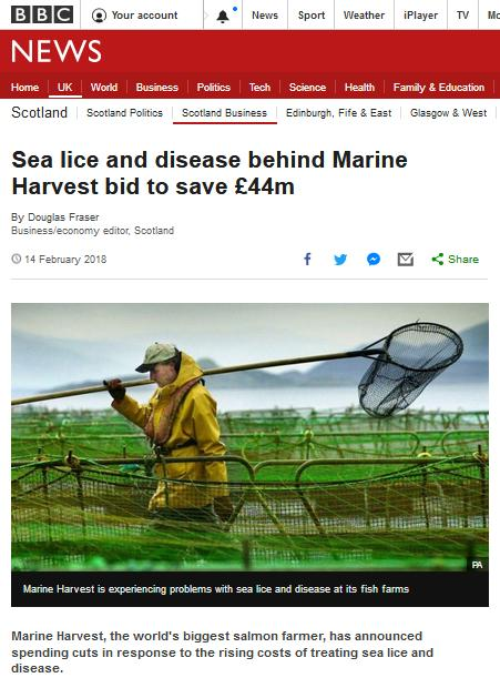 BBC News Feb 2018 disease lice