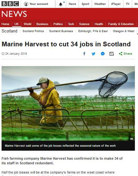 BBC News Jan 2018 job losses