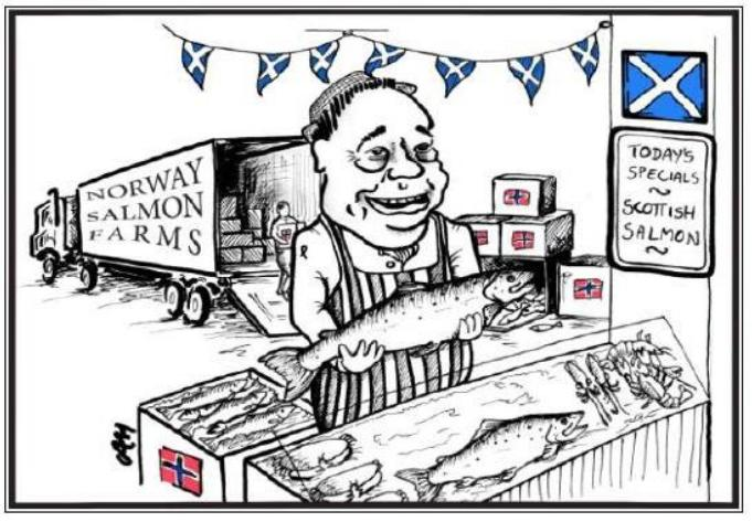 Salmond selling Norwegian salmon out of back of truck