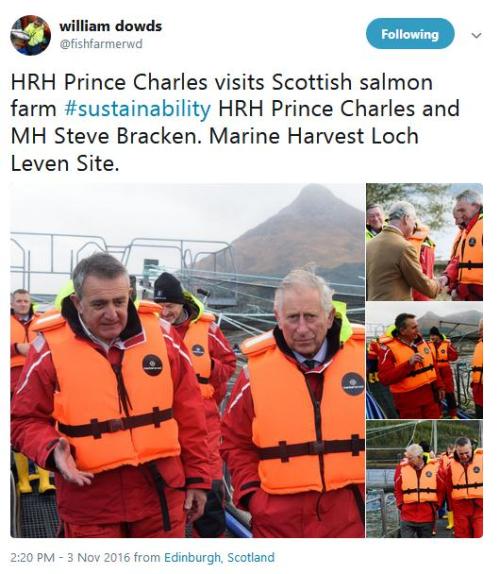 Prince Charles Tweet by Dowds