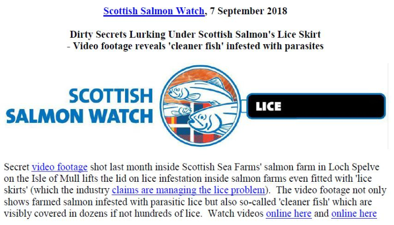 PR Dirty Secrets Lurking Under Scottish Salmon's Lice Skirt 7 Sept 2018 #1