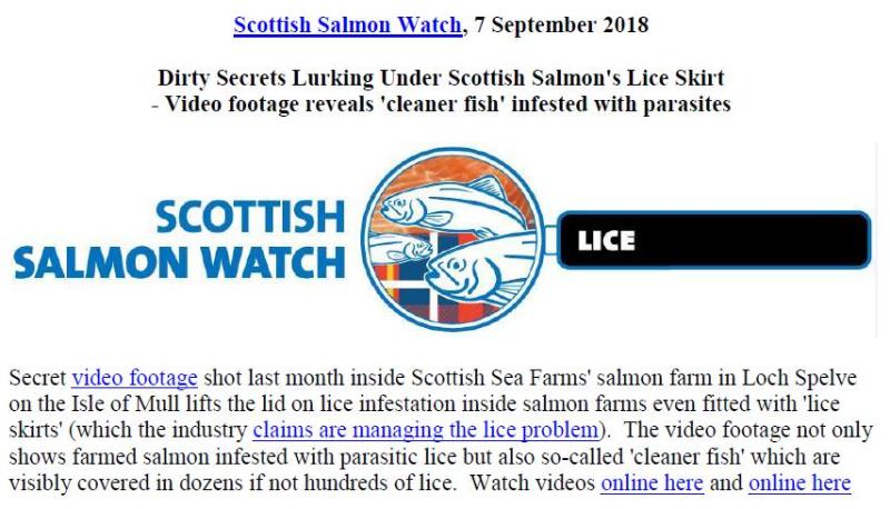 PR Dirty Secrets Lurking Under Scottish Salmon's Lice Skirt 7 Sept 2018 #1