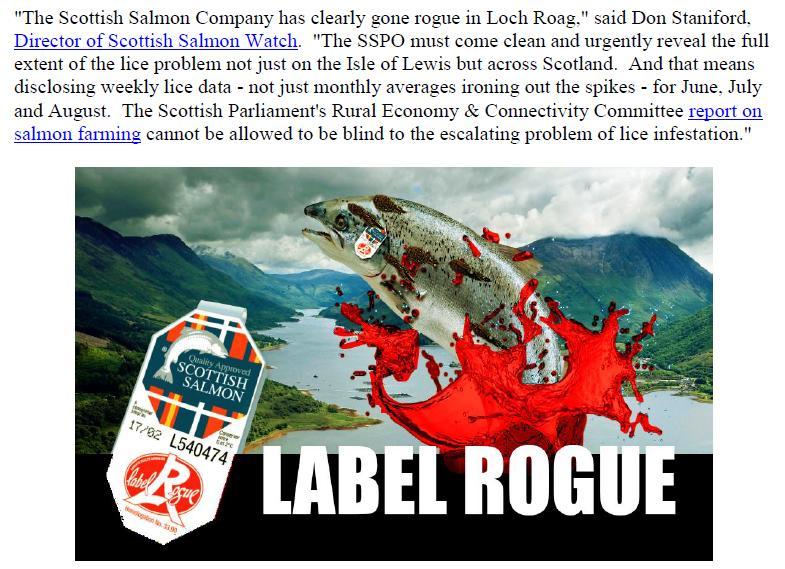 PR Going Rogue in Loch Roag 11 September 2018 #3