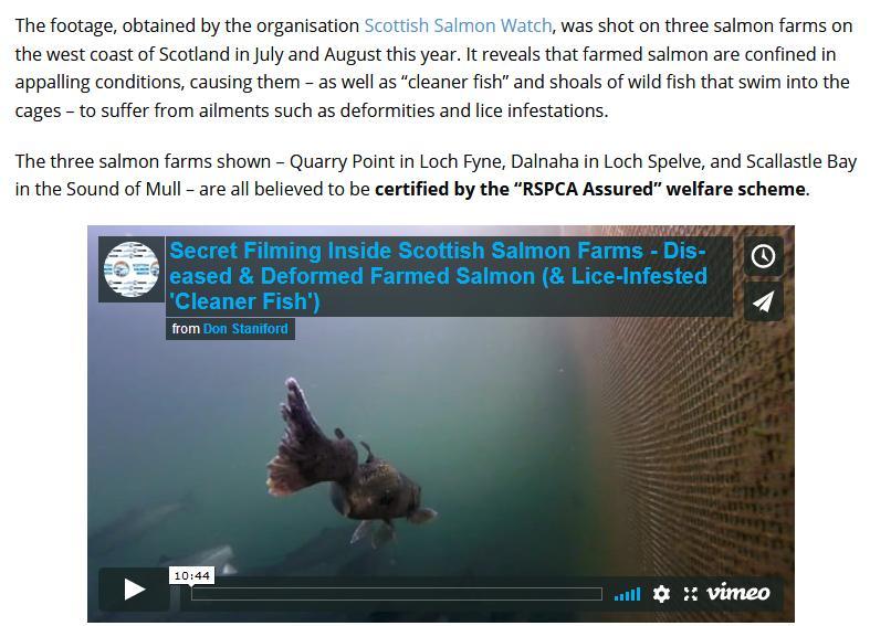 PETA on Shocking Video 13 Sept 2018 #3